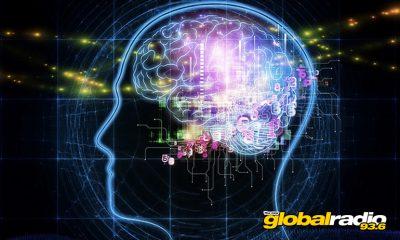 Brain Quest Marbella