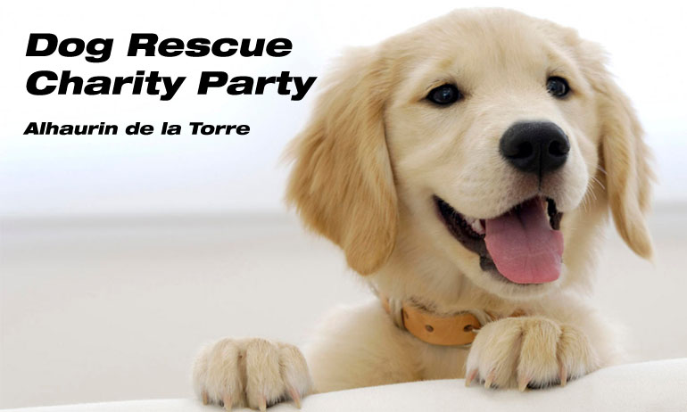 Chance Dog Rescue