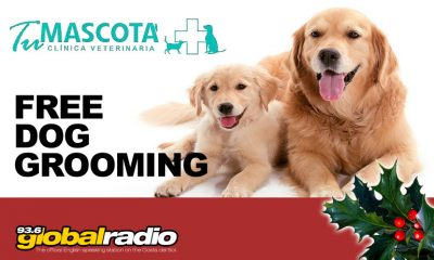 Tu Mascota Vets, Camino de Coin - 12 Days of Christmas Competition 93.6 Global Radio