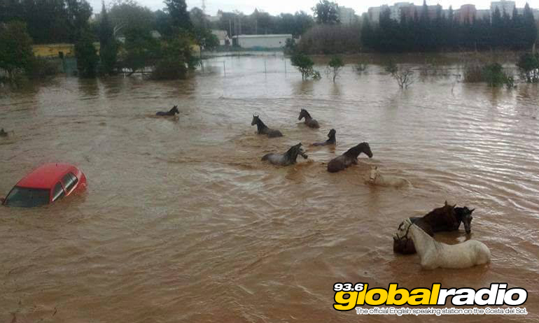 Horse and a car stranded in a flooded field near Las Lagunas. Photo by Angel Nozal Lajo