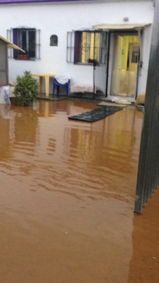 Flooding at the PAD animal shelter