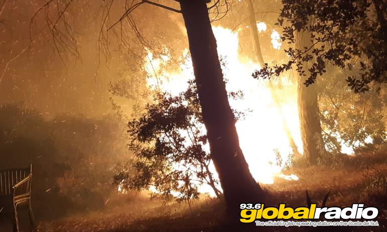 Casares Fire 2