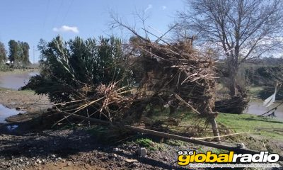 Snow And Storms Devastate Parts Of Malaga Province