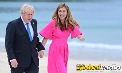 Boris Taking A Break Near Marbella